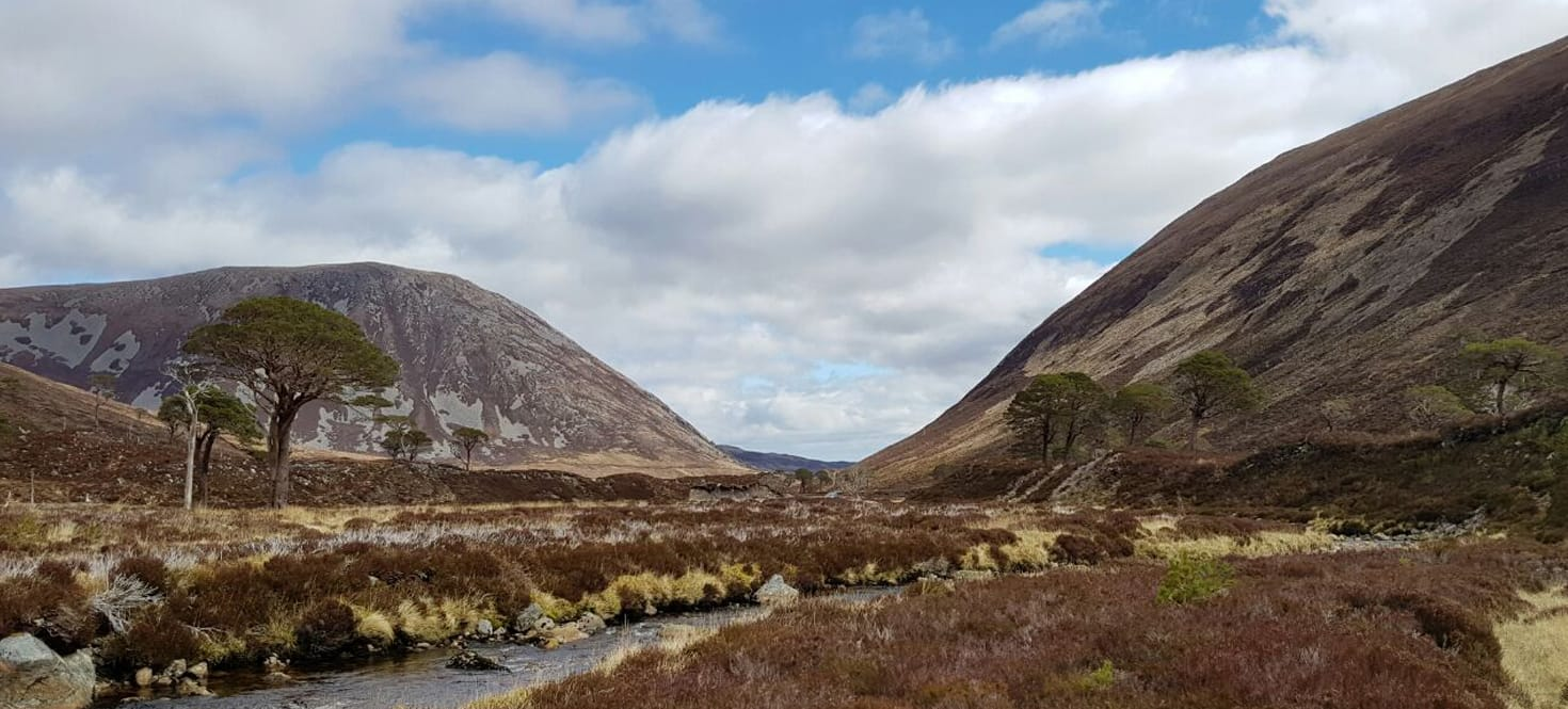 Alladale Wilderness Reserve, Scotland 2016